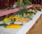 Výstava ovoce a zeleniny 2015